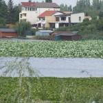piscina-snagov-vila-maria-3